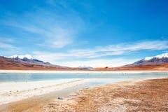Laguna ad alta altitudine sul plateau Altiplano, Bolivia Fotografia Stock Libera da Diritti