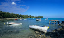 Laguna all'isola dell'Isola Maurizio di marea bassa Fotografie Stock