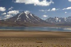 Laguna Altiplanica Arkivfoton