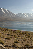 Laguna Altiplanica Fotos de archivo libres de regalías