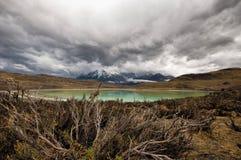 Laguna Amarga em Torres Del Paine fotos de stock
