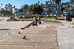 Curving wooden boardwalk with pigeons at Laguna Beach. Laguna Beach, California - October 9, 2018: This winding boardwalk was seen at Laguna Beach on this date royalty free stock photos