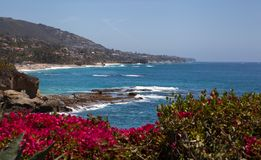 Laguna Beach coastal view. Framed by bright Bougainvillea flowers the blue Pacific Ocean and the cliffs to Dana Point Royalty Free Stock Photography