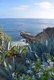 Laguna Beach Coastline & Gardens Royalty Free Stock Photos