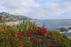 Laguna Beach Coastline & Gardens Stock Photos