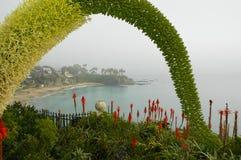 Laguna Beach Scene 2. View from above looking into Laguna Beach cove Royalty Free Stock Image