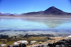 Laguna Blanca, Bolivia Stock Photography