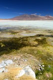 Laguna Blanca. Eduardo Avaroa Andean Fauna National Reserve. Bolivia. Laguna Blanca is a salt lake in an endorheic basin, in the Sur Lípez Province of the Potos Royalty Free Stock Photography