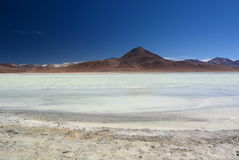 Laguna Blanca. Eduardo Avaroa Andean Fauna National Reserve. Bolivia. Laguna Blanca is a salt lake in an endorheic basin, in the Sur Lípez Province of the Potos Royalty Free Stock Photos