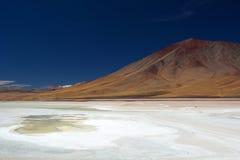Laguna Blanca. Eduardo Avaroa Andean Fauna National Reserve. Bolivia. Laguna Blanca is a salt lake in an endorheic basin, in the Sur Lípez Province of the Potos Royalty Free Stock Images
