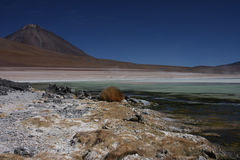 Laguna Blanca and Licancabur Stock Photo