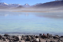 Laguna Blanca. People observing mountains and Laguna Blanca in Bolivia royalty free stock photo