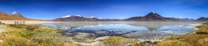 Laguna Blanca Reflections Panorama, Altiplano, Bolivia,. Laguna Blanca is a salt lake in an endorheic basin, in the Sur Lípez Province of the Potosí stock photo