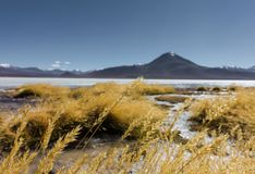 Laguna blanca w Salar De Uyuni, Boliwia zdjęcia royalty free