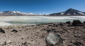 Laguna Blanca White lagun och Licancabur vulkan, Bolivia Arkivfoton