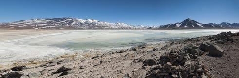 Laguna Blanca White lagun och Licancabur vulkan, Bolivia Royaltyfri Foto
