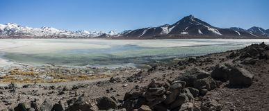 Laguna Blanca White lagun och Licancabur vulkan, Bolivia Arkivbild