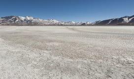 Laguna Blanca White lagun och Licancabur vulkan, Bolivia Royaltyfri Fotografi