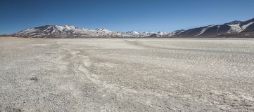 Laguna Blanca White lagun och Licancabur vulkan, Bolivia Royaltyfri Bild