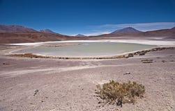 Laguna Blanco in Bolivia Royalty Free Stock Photos