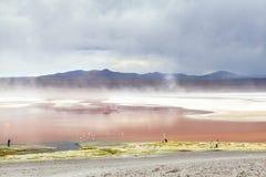Laguna in Bolivia Immagine Stock Libera da Diritti