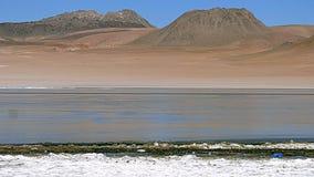 Laguna in Bolivian Altiplano, South America. Stock Photography