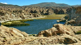 Laguna in Bolivian Altiplano, South America. Royalty Free Stock Photography