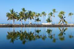 Laguna bonito com palmeiras, céu azul Foto de Stock Royalty Free