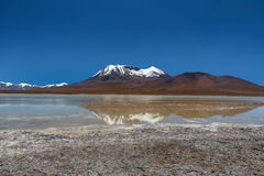 Laguna Canapa in Altiplano a salt lake, Bolivia Royalty Free Stock Photography