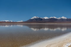 Laguna Canapa in Altiplano a salt lake, Bolivia Stock Photography