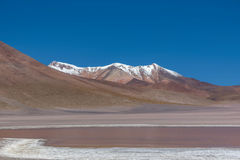 Laguna Canapa in Altiplano a salt lake, Bolivia Stock Images