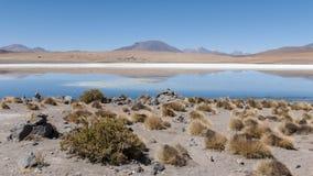 Laguna Canapa - Bolivië stock fotografie