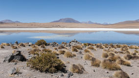Laguna Canapa - Bolivia Stock Photography