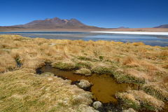 Laguna Canapa Departamento de Potosà bolivia Fotografía de archivo