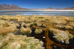 Laguna Canapa Departamento de Potosà bolivia Fotos de archivo