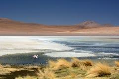 Laguna Canapa Departamento de Potosà bolivia Fotos de archivo libres de regalías
