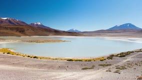Laguna Canapa panorama, Anderna mellan Bolivia och Chile Den utstående fryste salta sjön på vägen till den salta berömda Uyunien stock video