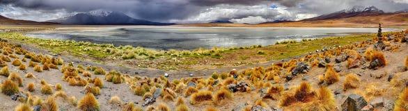 Laguna Canapana & x28; Bolivia& x29; Royaltyfri Foto