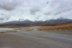 Laguna Capina, έρημος Atacama στοκ εικόνες