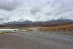 Laguna Capina, deserto de Atacama Foto de Stock