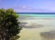 Laguna caraibica Fotografie Stock Libere da Diritti