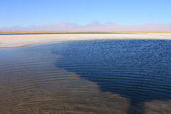 The Laguna Cejar, Chile Stock Images