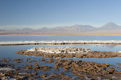 Laguna Cejas Photo libre de droits