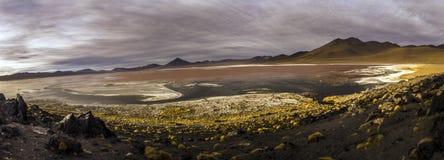 Laguna Colorada в кордильерах de Lipez, Боливии Стоковая Фотография RF