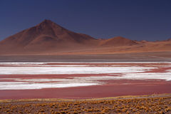 Laguna Colorada. National Park in southern Bolivia Royalty Free Stock Photography