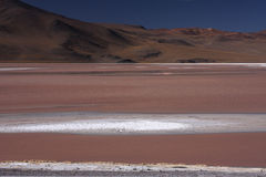 Laguna Colorada. (Red Lagoon) is a shallow salt lake in the southwest of the altiplano of Bolivia close to the border with Chile Stock Image
