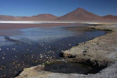 Laguna Colorada. (Red Lagoon) is a shallow salt lake in the southwest of the altiplano of Bolivia close to the border with Chile Stock Images