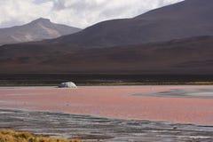 Laguna Colorada Imagen de archivo libre de regalías