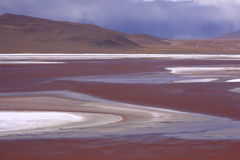 Laguna Colorada. In Bolivia, near Uyuni Salt Flat Royalty Free Stock Photography