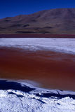 Laguna Colorada. Pictura taken of the surreal colored Laguna Colorada on the Apltiplano Bolivia Royalty Free Stock Image
